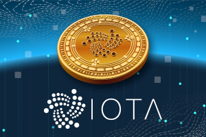 IOTA Review