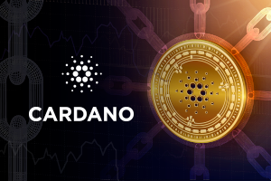 Cardano Review